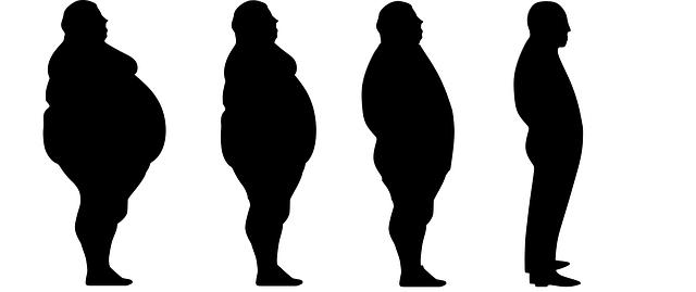 Cesta k hubnutí