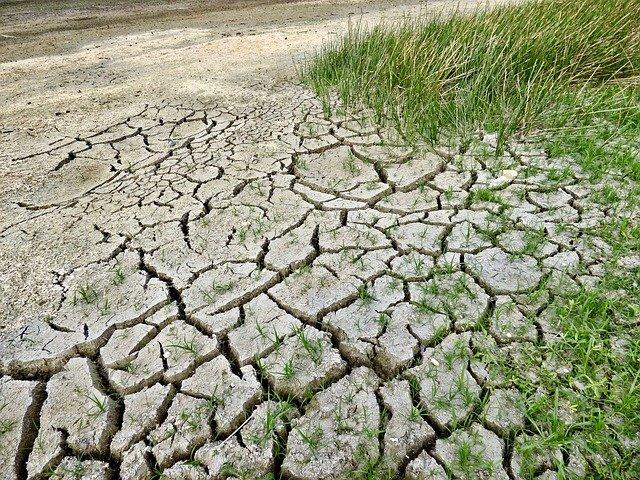 Teplo, sucho a nedostatek vody